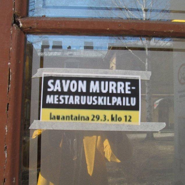 murre7-1 (2)